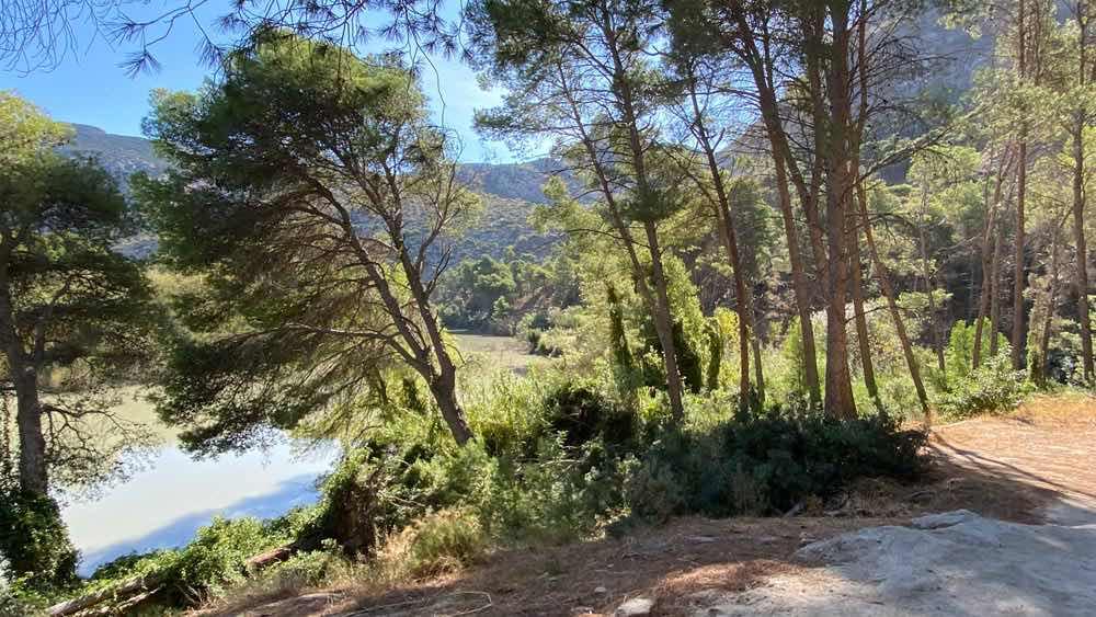 paisagem com árvores no caminito del rey
