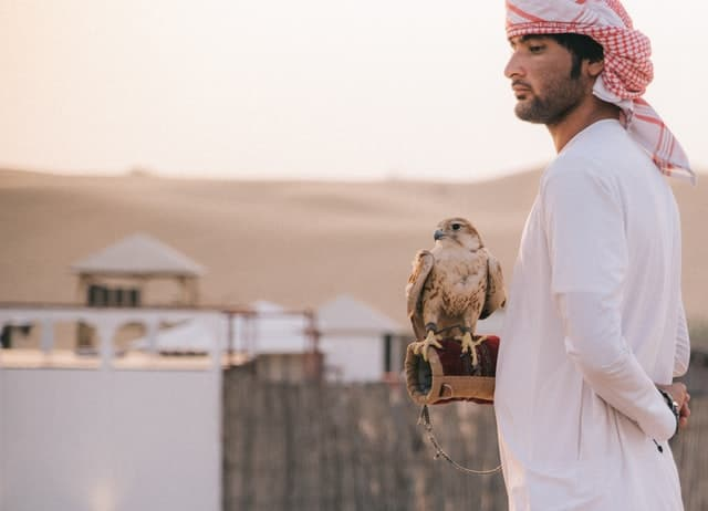 homem junto de uma águia durante o dia