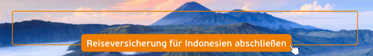 krankenschutz indonesien