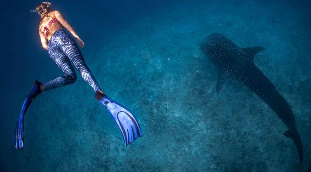 Voraussetzungen für eine Reise auf die Malediven